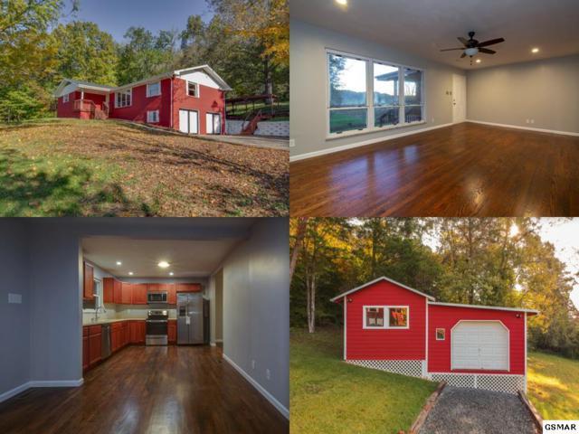 8605 Kodak Road, Knoxville, TN 37914 (#219182) :: Colonial Real Estate