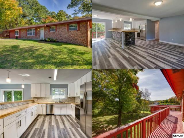 412 Kingfisher Ave, Sevierville, TN 37862 (#219265) :: Colonial Real Estate