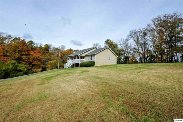 1196 Winding Drive, Sevierville, TN 37876 (#219360) :: Colonial Real Estate