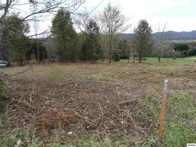 lot 95 Eagle View Dr, Kodak, TN 37764 (#219447) :: The Terrell Team