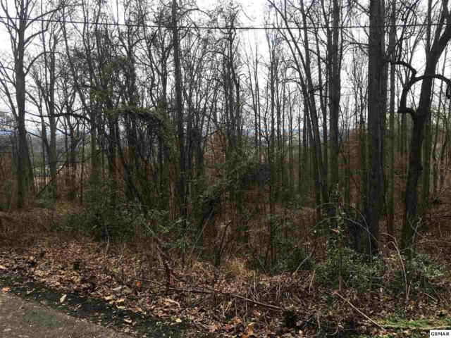 Lot 37 Twin City Way, Pigeon Forge, TN  (#219454) :: Billy Houston Group