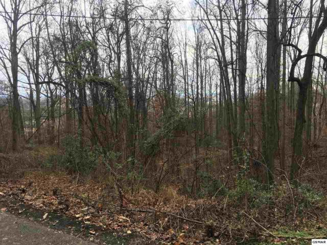 Lot 34 Twin City Way, Pigeon Forge, TN  (#219455) :: Billy Houston Group