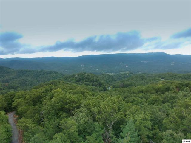 Lot#10 Emerald Springs Loop, Sevierville, TN 37862 (#219469) :: Billy Houston Group