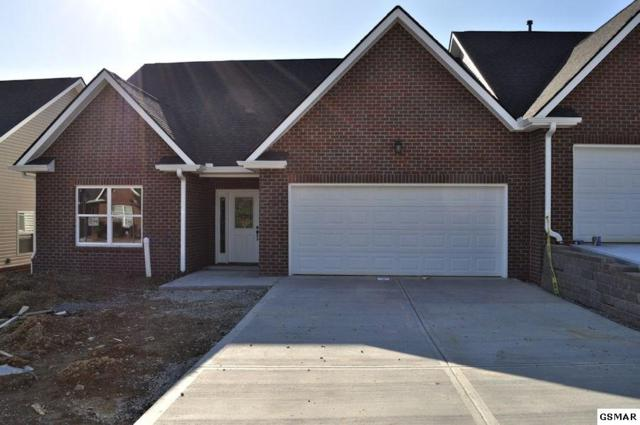 1117 Fellin View Way, Sevierville, TN 37876 (#219498) :: Billy Houston Group