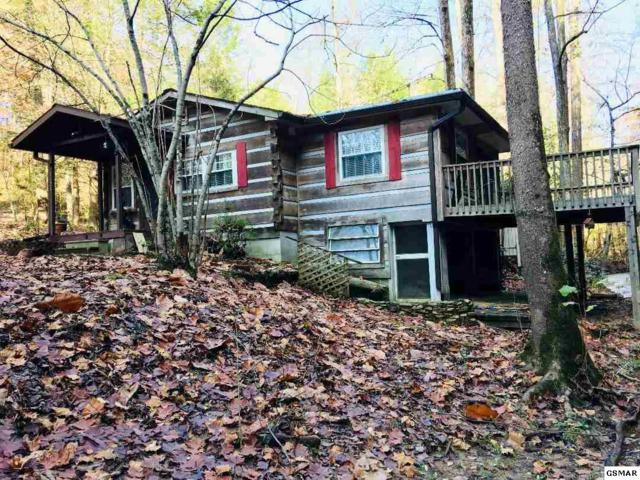 3125 Cool Creek Road Creek Frontage, Sevierville, TN 37862 (#219522) :: The Terrell Team
