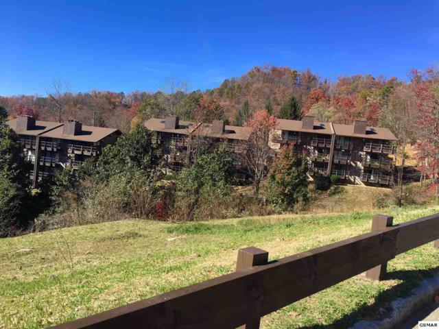 1081 Cove Rd    U913, Sevierville, TN 37876 (#219524) :: The Terrell Team