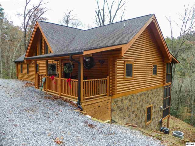 4410 Whetstone Road, Sevierville, TN 37862 (#219586) :: Four Seasons Realty, Inc