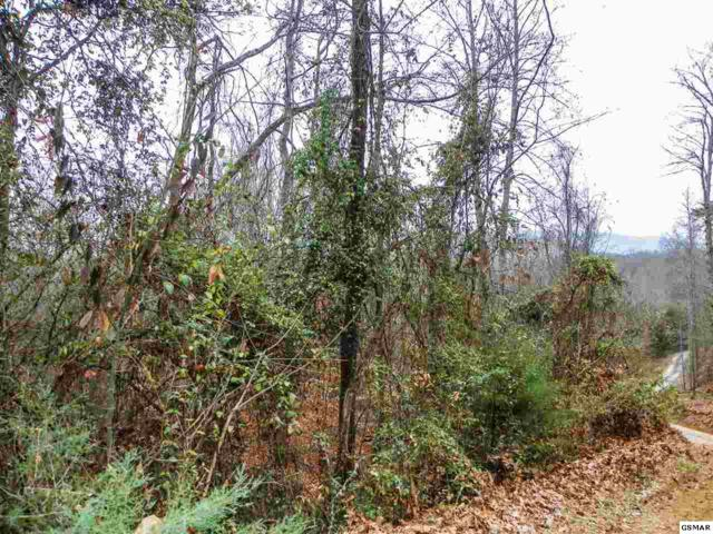 George Harrison Way, Seymour, TN 37865 (#219798) :: Colonial Real Estate