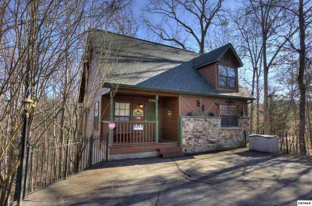 2813 Forrest Way, Pigeon Forge, TN 37863 (#219900) :: Billy Houston Group