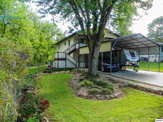 144 Indiana Avenue, Pigeon Forge, TN 37863 (#219932) :: The Terrell Team