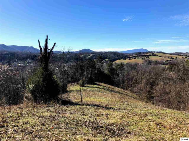 2289 Red Bank Road, Sevierville, TN 37876 (#219959) :: The Terrell Team