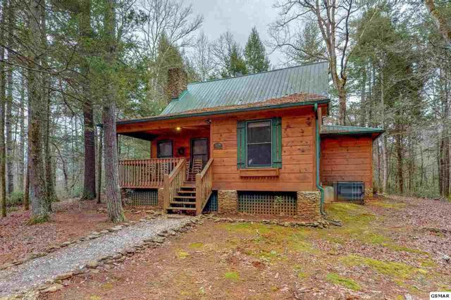 221 Fern Ridge Rd, Townsend, TN 37882 (#220013) :: SMOKY's Real Estate LLC