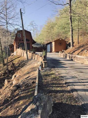 1315 Rocky Top Way, Townsend, TN 37882 (#220046) :: SMOKY's Real Estate LLC