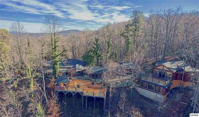 646 Jefferson Rd, Gatlinburg, TN 37738 (#220112) :: Billy Houston Group