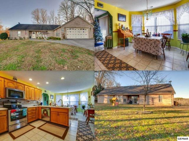 2513 Friar Wood Lane, Sevierville, TN 37876 (#220121) :: Colonial Real Estate
