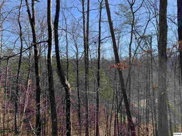 LT 1D W Gold Dust Drive, Pigeon Forge, TN 37863 (#220175) :: Colonial Real Estate