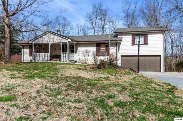 351 Fox Creek Rd., Seymour, TN 37865 (#220217) :: Billy Houston Group