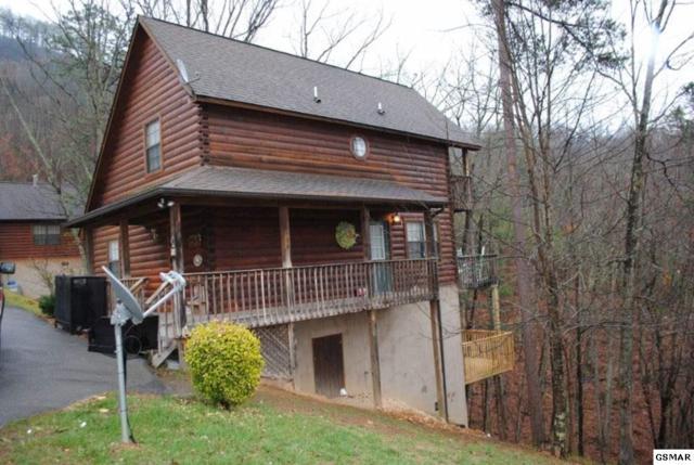 1664 Raccoon Den Way, Sevierville, TN 37862 (#220248) :: Colonial Real Estate