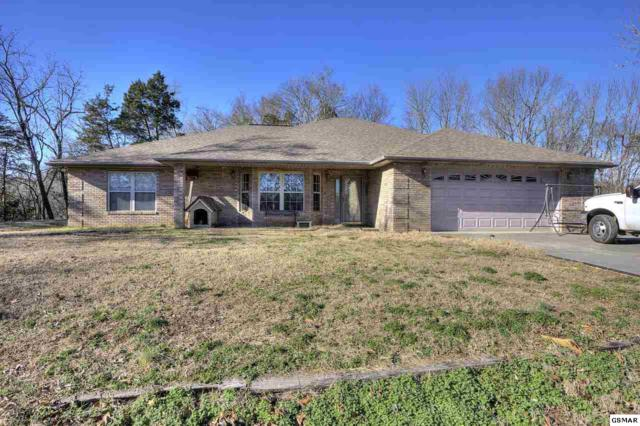 521 Cedar Top Drive, Sevierville, TN 37876 (#220313) :: Prime Mountain Properties