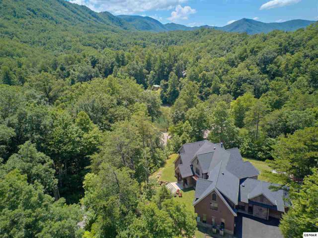 419 Mountain View Road, Sevierville, TN 37876 (#220337) :: Prime Mountain Properties