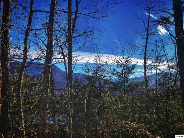 Lot Lot Lot 5 Moonshine Way, Gatlinburg, TN 37738 (#220347) :: The Terrell Team