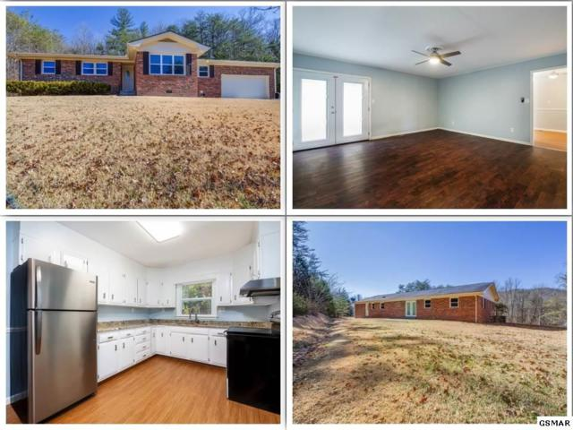 330 Old Clear Branch Lane, Rocky Top, TN 37769 (#220395) :: The Terrell Team