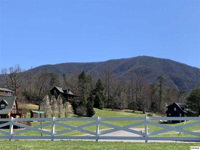 Lot 4 Cove Meadows Dr, Sevierville, TN  (#220419) :: Colonial Real Estate