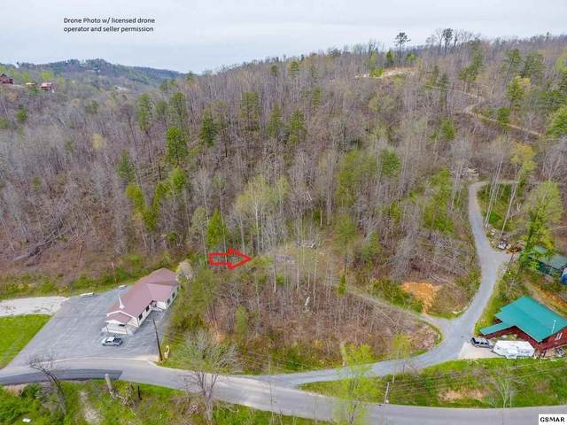 1205 Maples Manor Way, Gatlinburg, TN 37738 (#220422) :: Four Seasons Realty, Inc