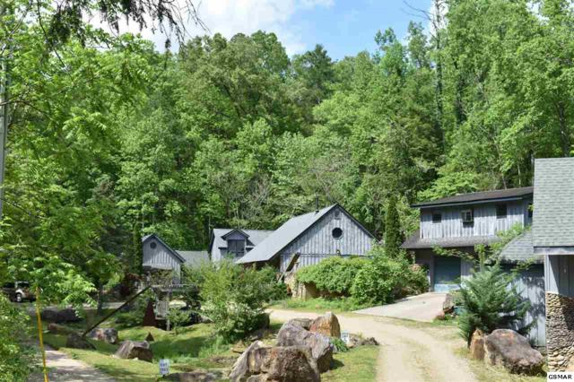 252 Buckhorn Rd, Gatlinburg, TN 37738 (#220564) :: Colonial Real Estate