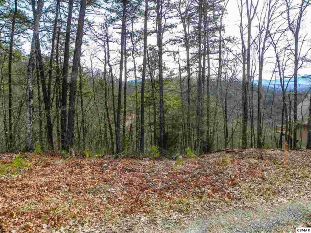 Lot# 7 Eagle Point, Sevierville, TN 37876 (#220581) :: Billy Houston Group
