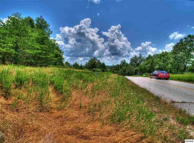 Lot 402 Flint Ridge Rd, Rockwood, TN 37854 (#220610) :: Four Seasons Realty, Inc