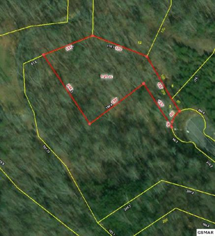 Lot 5 Pheasant Court, Sevierville, TN 37876 (#220636) :: The Terrell Team