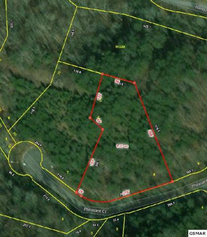 Lot 8 Pheasant Court, Sevierville, TN 37876 (#220639) :: The Terrell Team