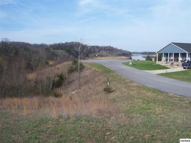 Lot 64 Sanctuary Shores Way, Sevierville, TN 37876 (#220727) :: The Terrell Team