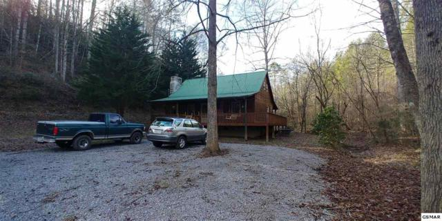 4465 Ball Hollow Road, Cosby, TN 37722 (#220754) :: Billy Houston Group