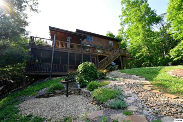 1116 Laurel Road, Townsend, TN 37882 (#220772) :: Prime Mountain Properties