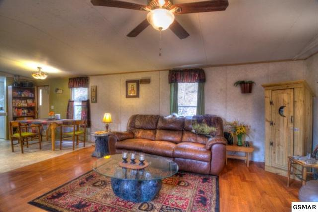 1391 Gists Creek Rd, Sevierville, TN 37876 (#220791) :: Colonial Real Estate