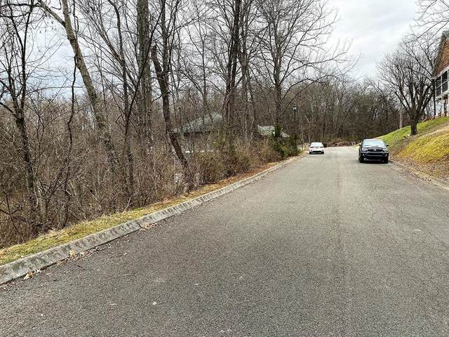 Maggie Mack Ln Lot 31, Sevierville, TN 37862 (#220860) :: Colonial Real Estate
