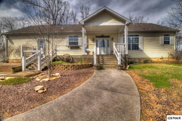 1048 Harbor Point Dr, Sevierville, TN 37876 (#221053) :: Prime Mountain Properties