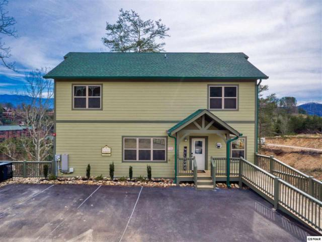 1129 Cove Falls Way, Pigeon Forge, TN 37863 (#221137) :: Billy Houston Group