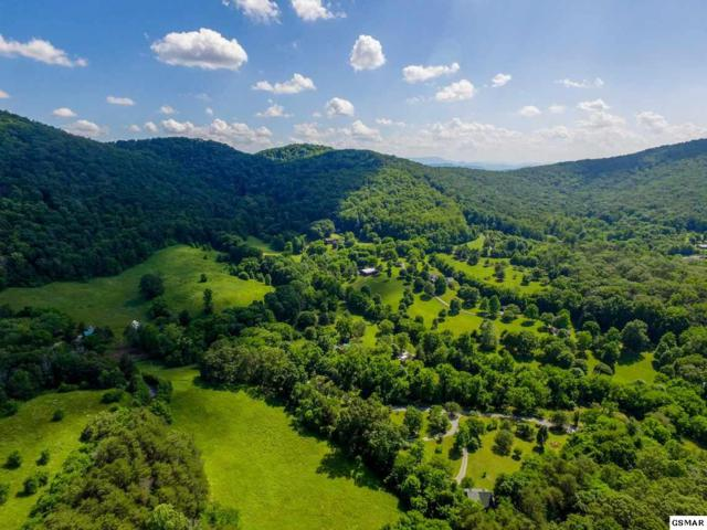 Parcel 41 105 Poplar View Lane, Sevierville, TN 37876 (#221353) :: Prime Mountain Properties