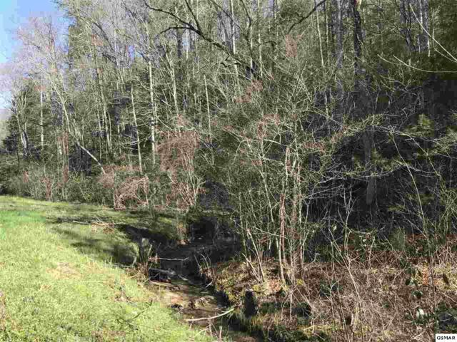 Lot 1 Obes Branch Rd, Sevierville, TN 37876 (#221387) :: Prime Mountain Properties