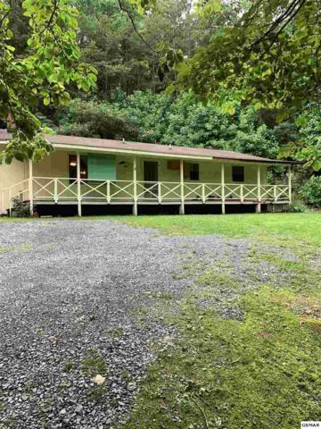 709 Ogle Lane, Gatlinburg, TN 37738 (#221442) :: Prime Mountain Properties