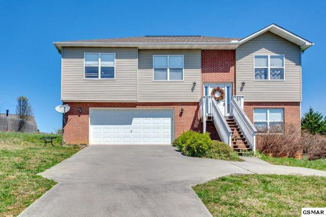 520 N Pitner Rd, Seymour, TN 37865 (#221611) :: Prime Mountain Properties