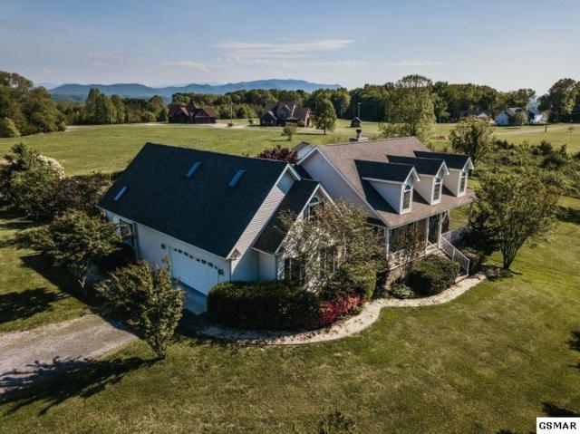 3549 Mountain View Lane, White Pine, TN 37890 (#221614) :: Four Seasons Realty, Inc