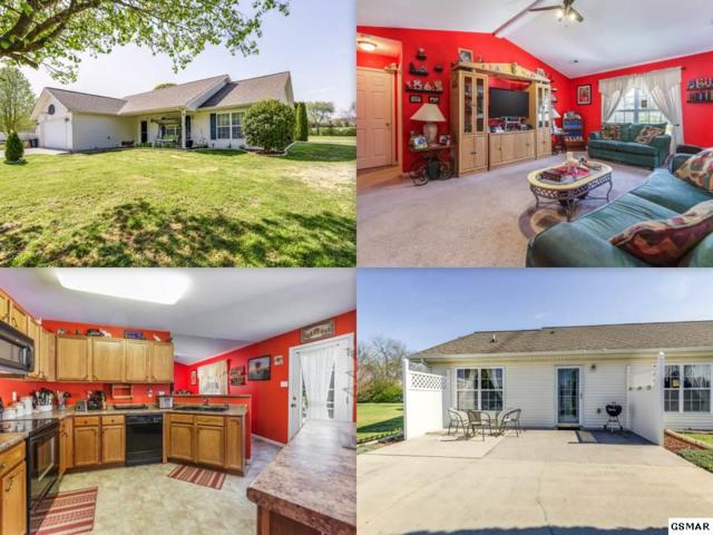 115 Modell Way, Maryville, TN 37801 (#221635) :: Prime Mountain Properties