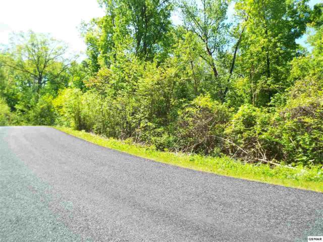 Lot 18 Stone Bridge Drive, Dandridge, TN 37725 (#221964) :: Prime Mountain Properties