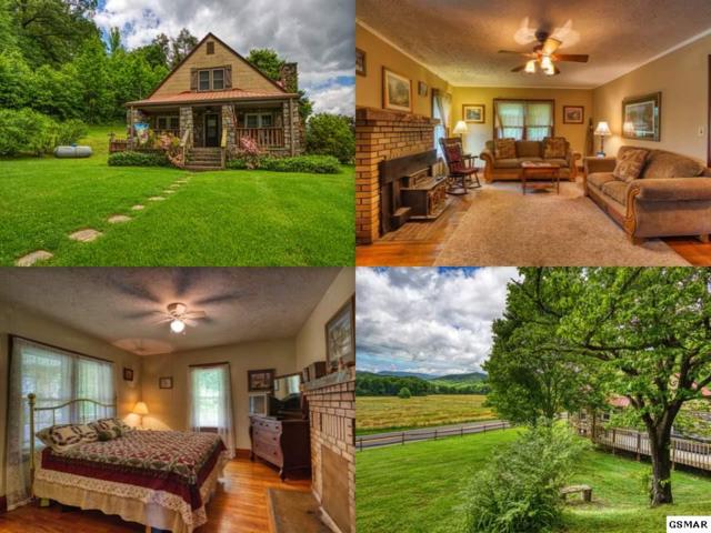 3714 Cosby Highway, Cosby, TN 37722 (#222222) :: Prime Mountain Properties