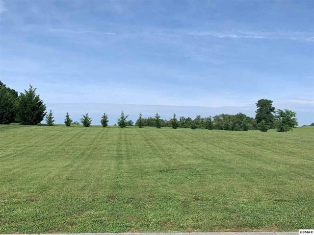 Lot 17 Luxury Lane, Dandridge, TN 37725 (#222281) :: Four Seasons Realty, Inc