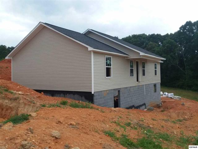 1409 Snapp Rd, Sevierville, TN 37862 (#222296) :: Colonial Real Estate